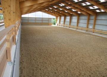 Manèges chevaux